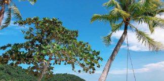 du lịch Nha Trang - Vẻ đẹp tự nhiên