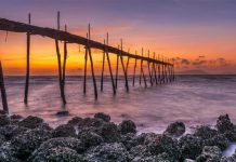 Tour du lịch hè 2021 ở miền Nam có gì hấp dẫn du khách?